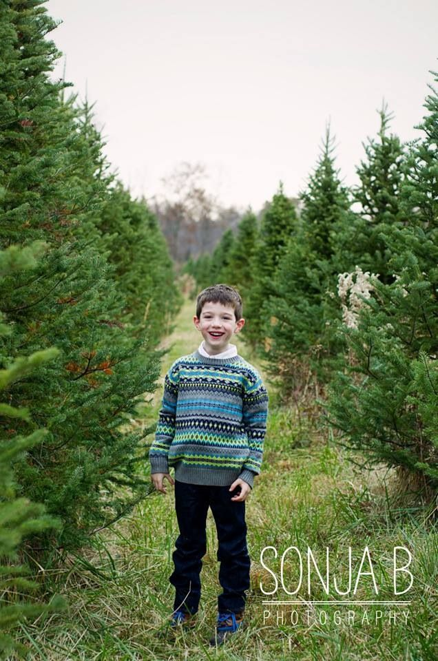 Christmas Tree Farm Sessions In Cincinnati Ohio With Sonja B Photography A Family And Child Photographer