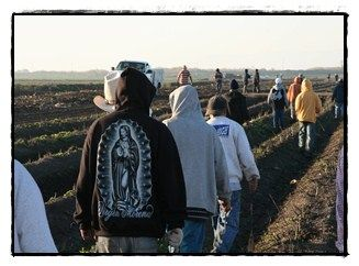 Featured project: Catholic Migrant Farmworker Network (CMFN) consists of 600 members, including individuals, pastoral agents/volunteers, diocesan personnel, farmworkers/rural immigrants and other farmworker or rural organizations.