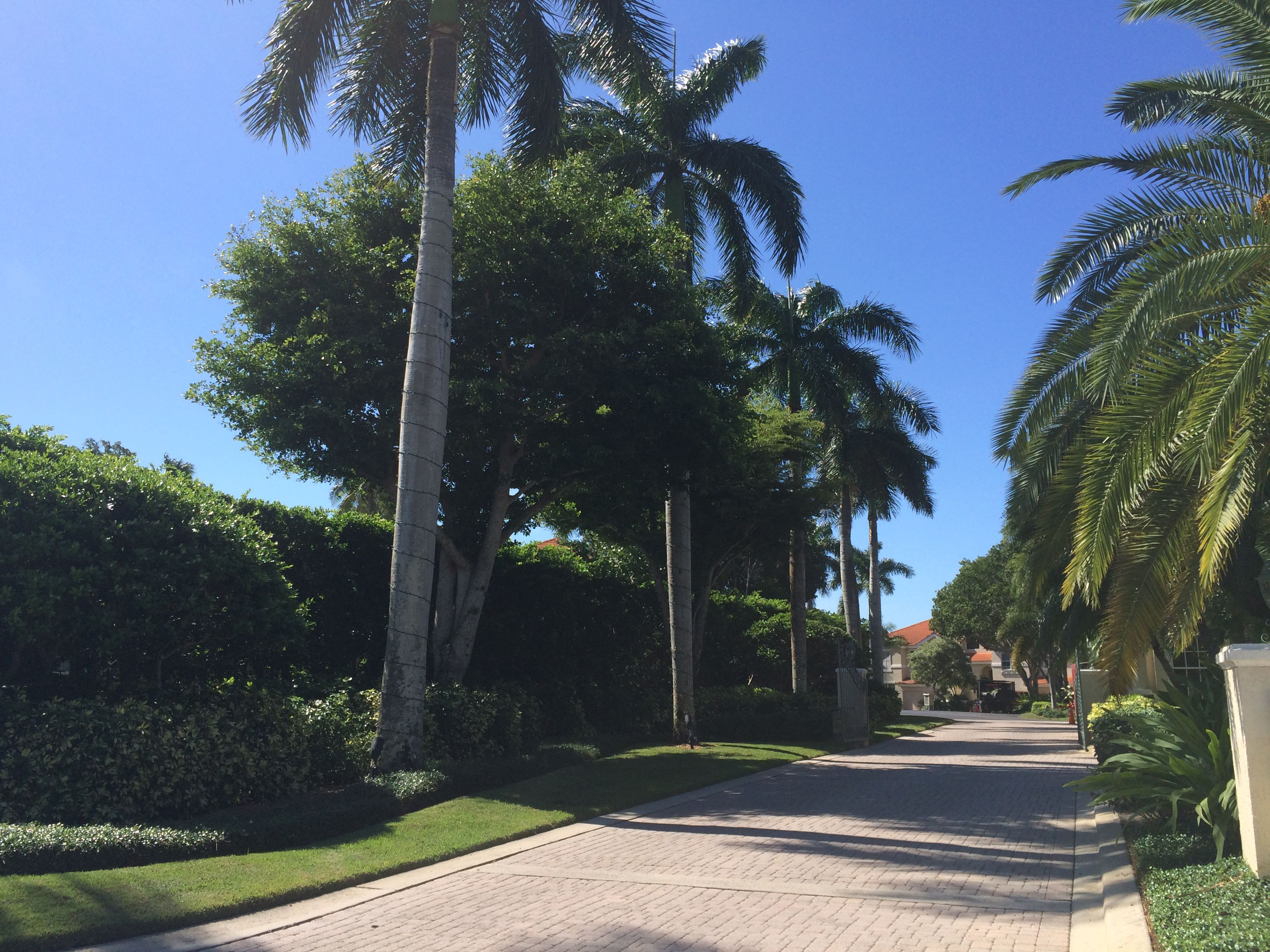 Colonade Naples #Landscaping #Crawfordlandscaping #Naples