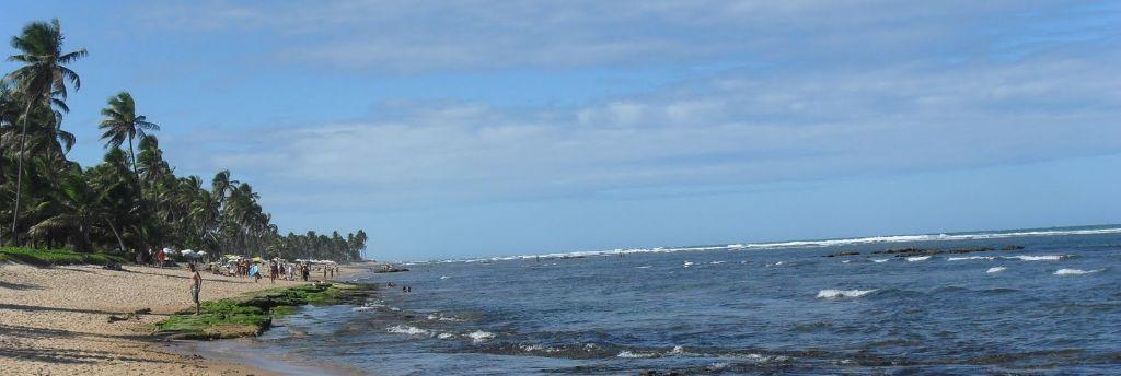A Praia do Forte - Beleza sem fim...