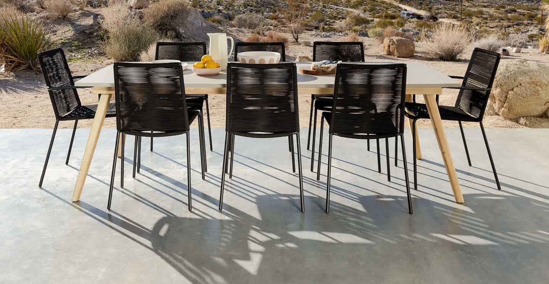 Zina Ember Black Dining Chair Black Dining Chairs Dining Chairs Midcentury Modern Dining Chairs