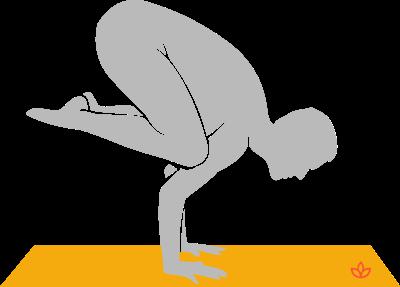 kakasana  hatha yoga poses yoga learn yoga