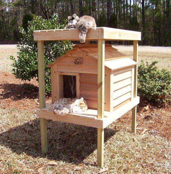 "Photo of 20 ""Cat House con plataforma y loft – Custom Dog & Cat Houses por Blythe Wood Works"