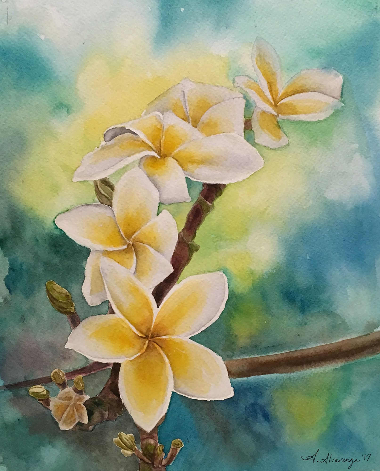 Artshow Plumeria Sunshine Watercolor Learn To Paint Painting