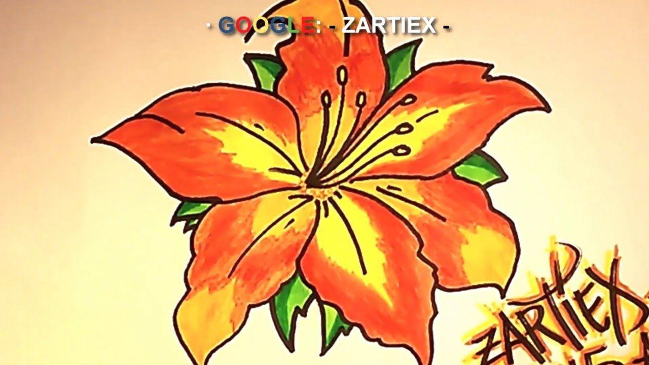Imagenes De Dibujos De Flores A Color: Imagenes De Flores HD Videos 1080p Remix 2016