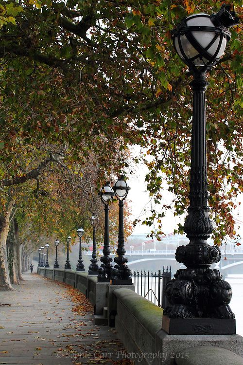 Autumn On Chelsea Embankment Sophie Carr Photography Scenery Photography London Wallpaper London Holiday