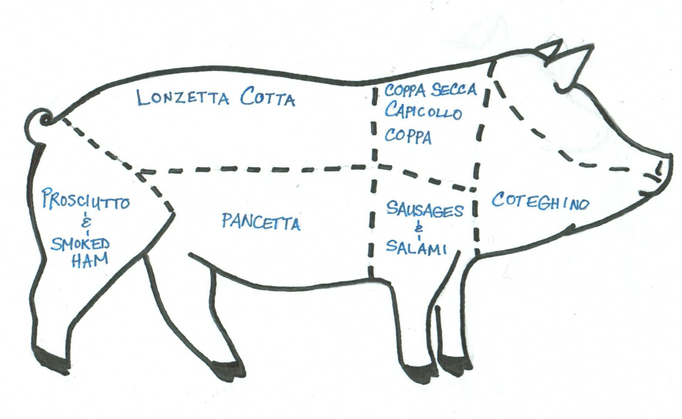 pig diagram of italian meats