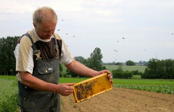 ARTIKEL: Ter Loft: Bioboederij met gastenkamers in Ternat