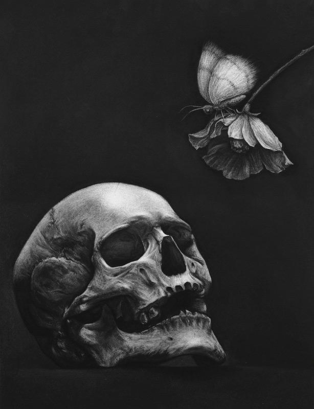 Skull - Moth - Flower