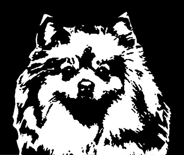 Pomeranian Black White Stencil Dog Art Print Dog Stencil Dog Print Art Silhouette Art