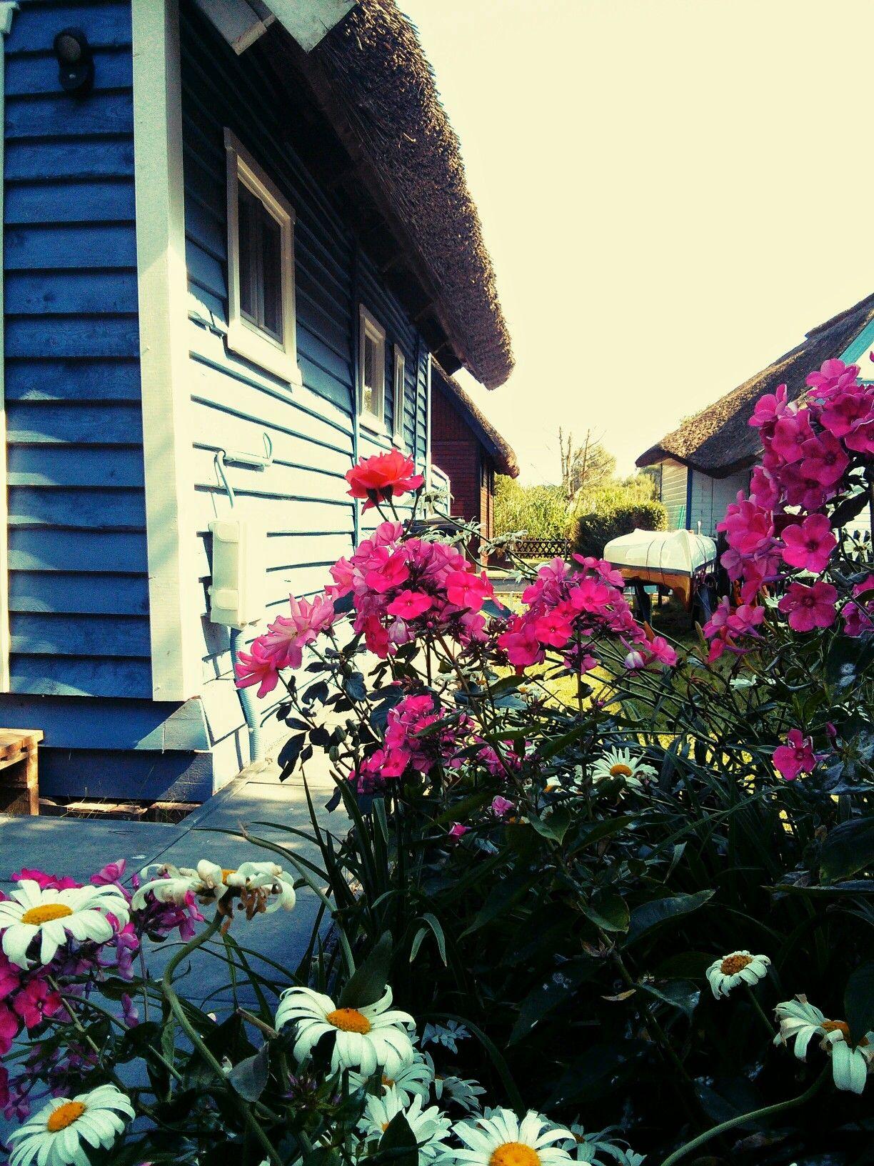 Blaues Bootshaus in Teterow Ferien am Wasser