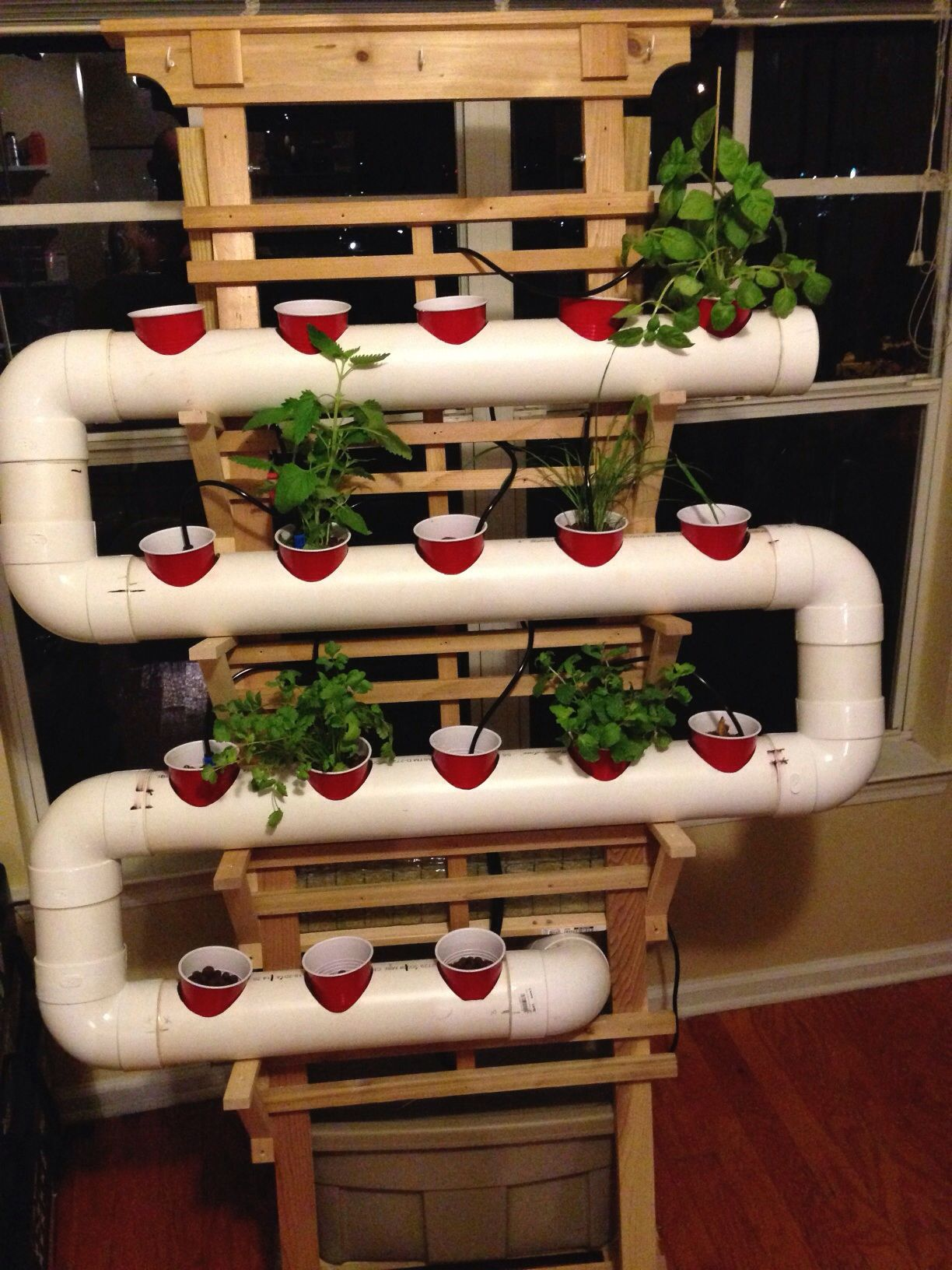 I've always wanted to build a small hydroponic herb garden