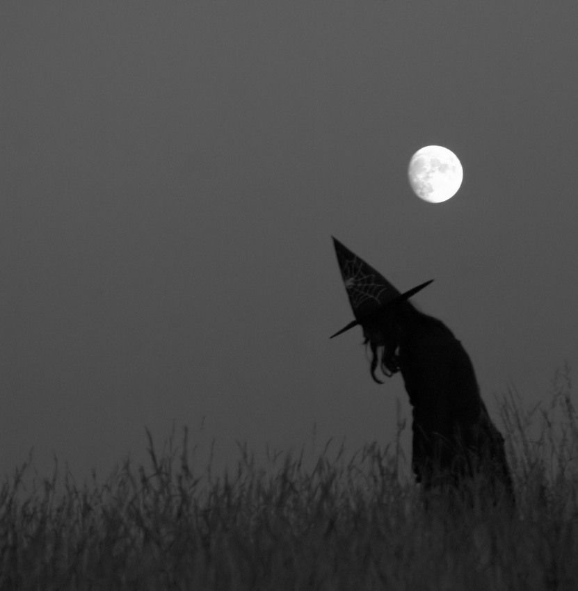 #witch @MeltemArikan @ButterflyofMuse @DefneAnter @MelinEdo @JuliawsChau (;-) #occult #pagan