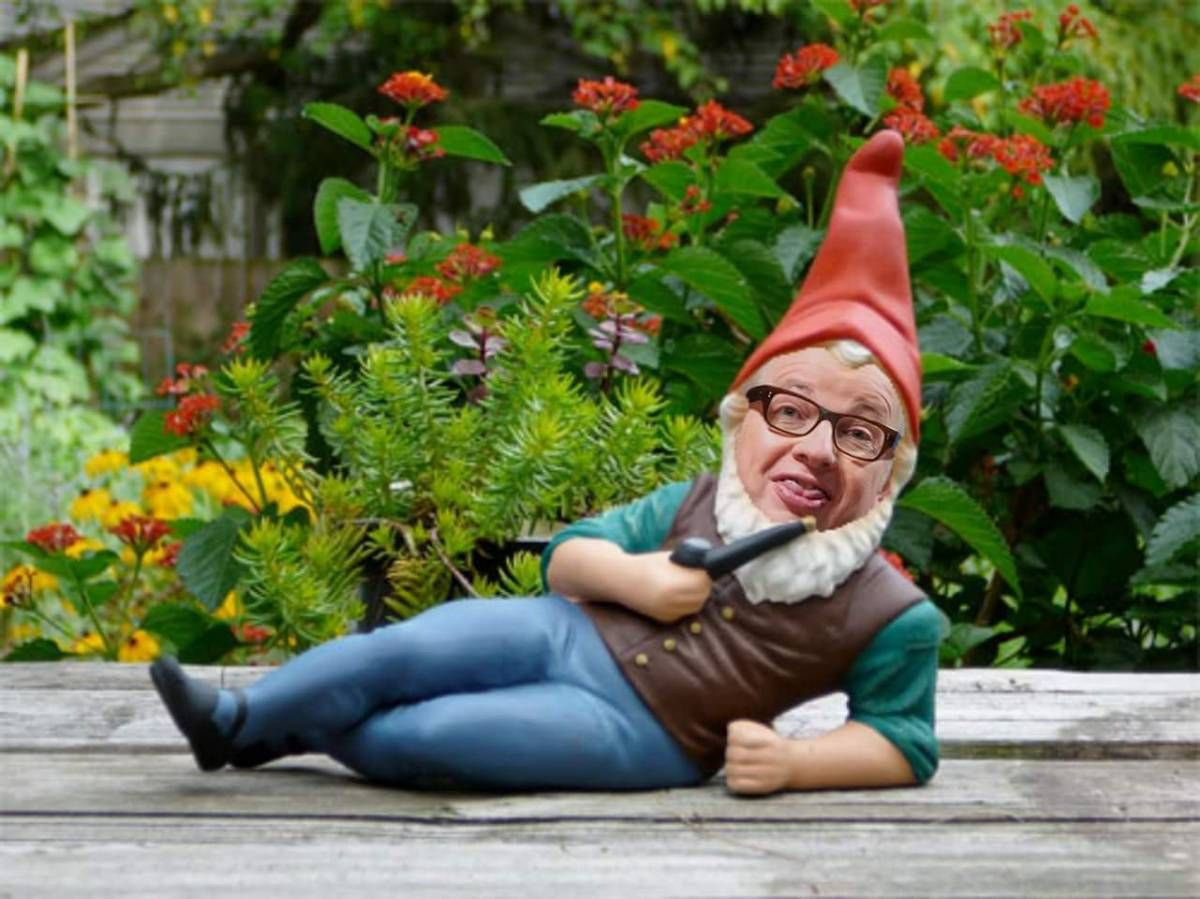 Pin by The Rochdale Herald on The Rochdale Herald Gnome