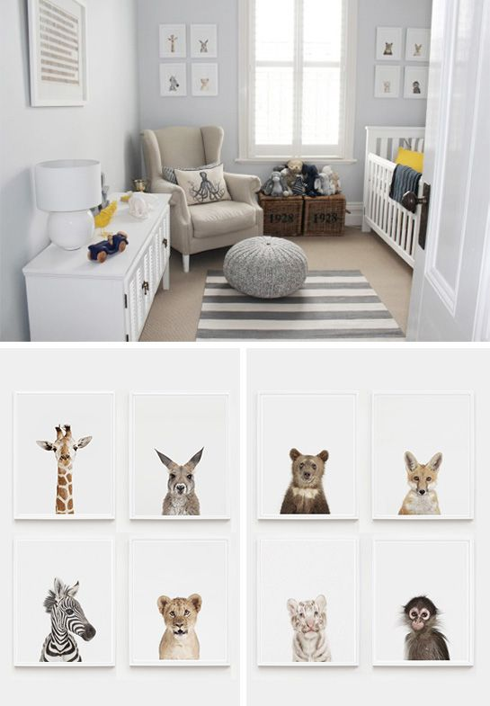Boy nursery: Freddie's Soulful Suite. — The Animal Print Shop