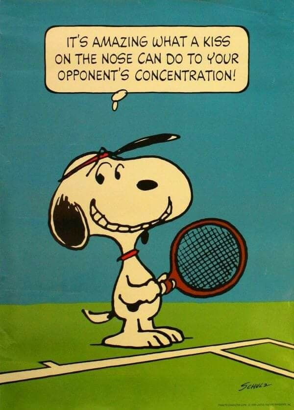 Pin By Cathy Lasky On Tennis Tennis Quotes Tennis Tennis Funny