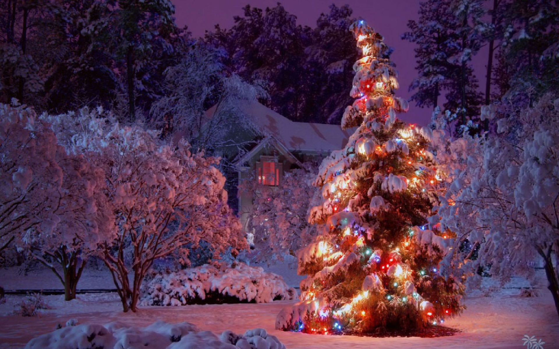 Christmas Wallpapers Download several types of free