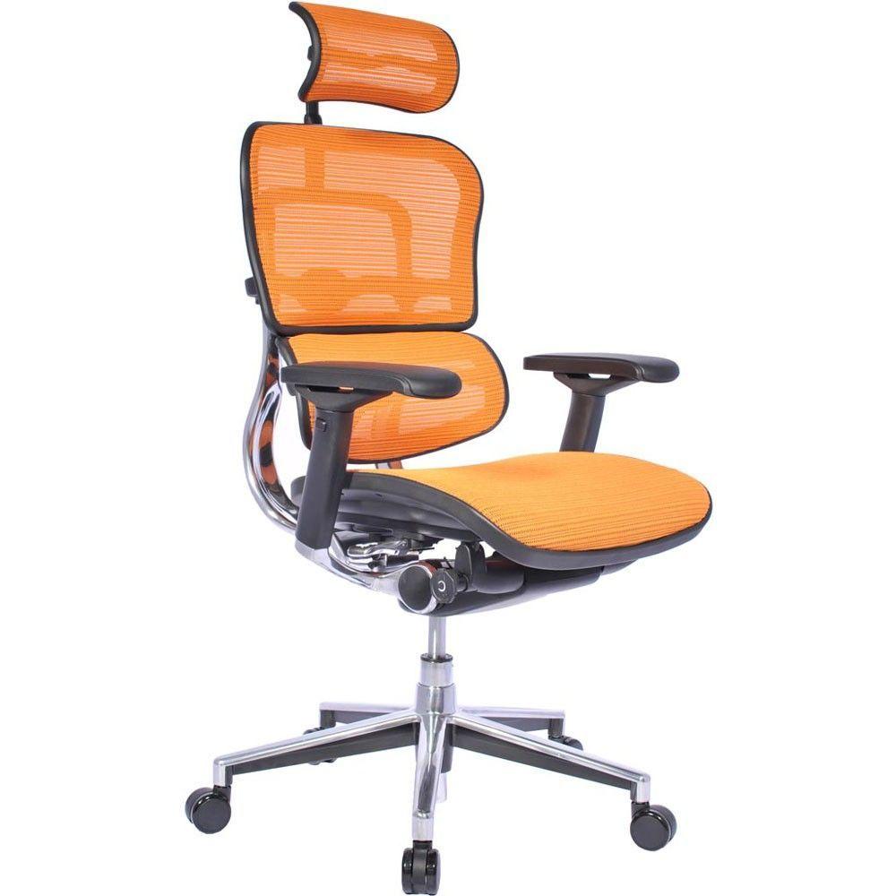 Ergohuman Chair In Mesh With Headrest