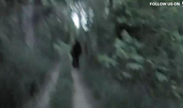 "Bigfoot Evidence: "" Exists"" Has"