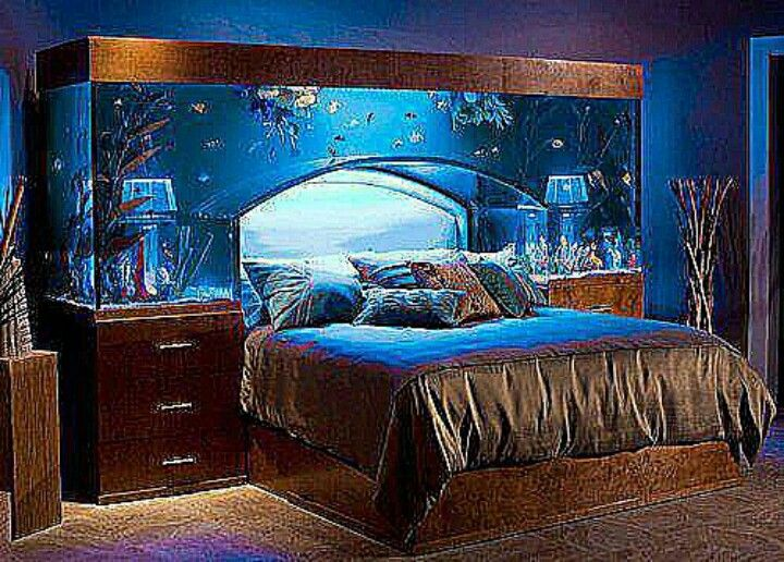 I want a bed exactly like this except a little higher for Fish tank bedroom ideas