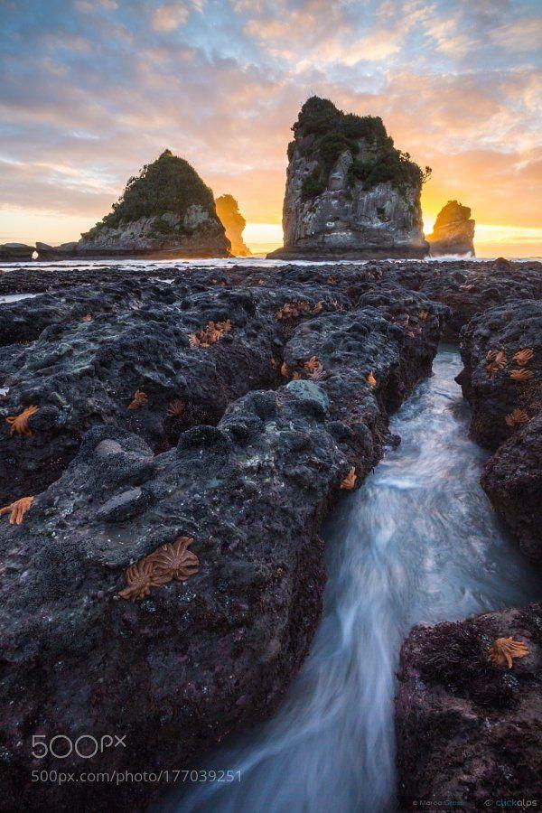 #photography Hidden World by MarcoGrassi https://t.co/JLFjzqilnF #followme #photography