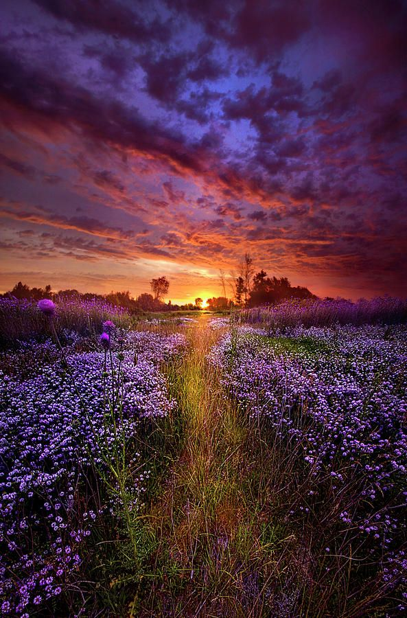 A Peaceful Proposition Beautiful Landscapes Landscape Photography Beautiful Nature