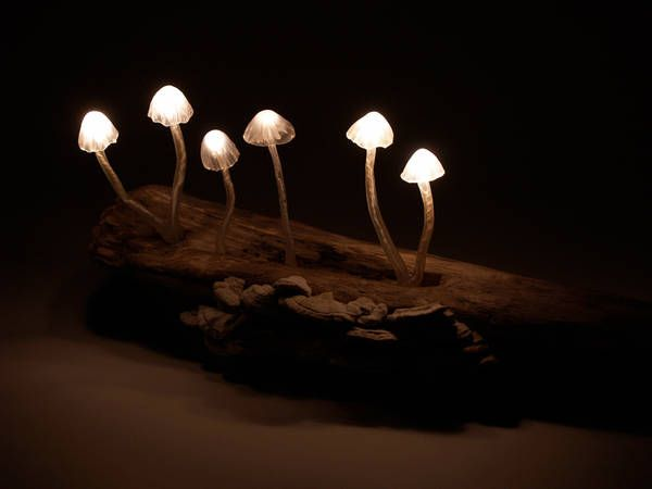 Better In The Dark Mushroom Led Lamps Designfaves Mushroom Lights Mushroom Lamp Forest Room