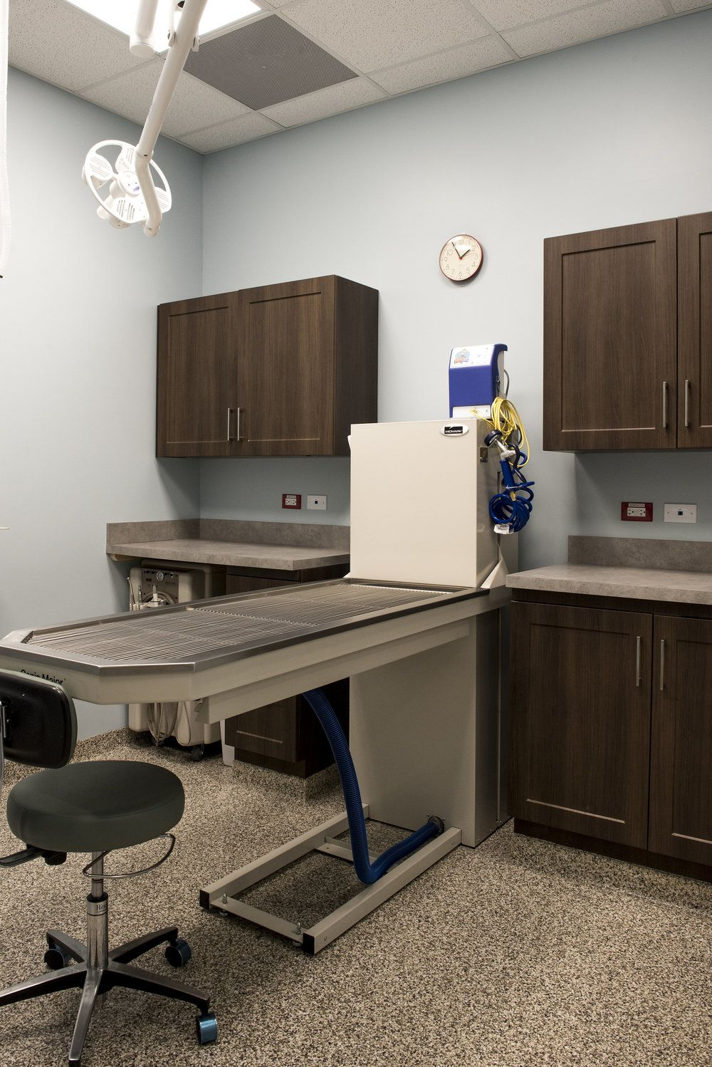 Animal care exam room design Hospital design, Clinic