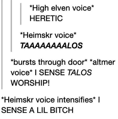 Altmer High elves and Heimskr
