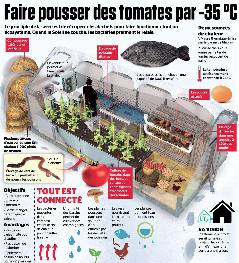 Faire Un Bassin Exterieur et alors les déchets chauffent la serre et les tomates