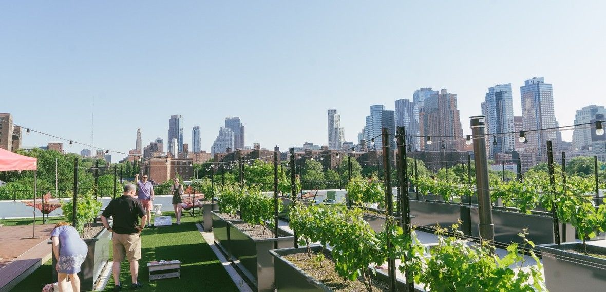 Rooftop Reds Brooklyn Navy Yard New York The Infatuation Nyc Rooftop Rooftop Outdoor