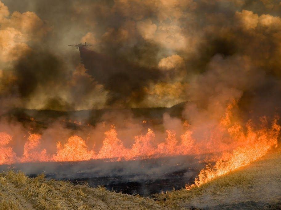 fire wildfire great basin rangeland smokejumpers incident