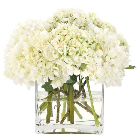 Simple square vase with dried hydrangeas