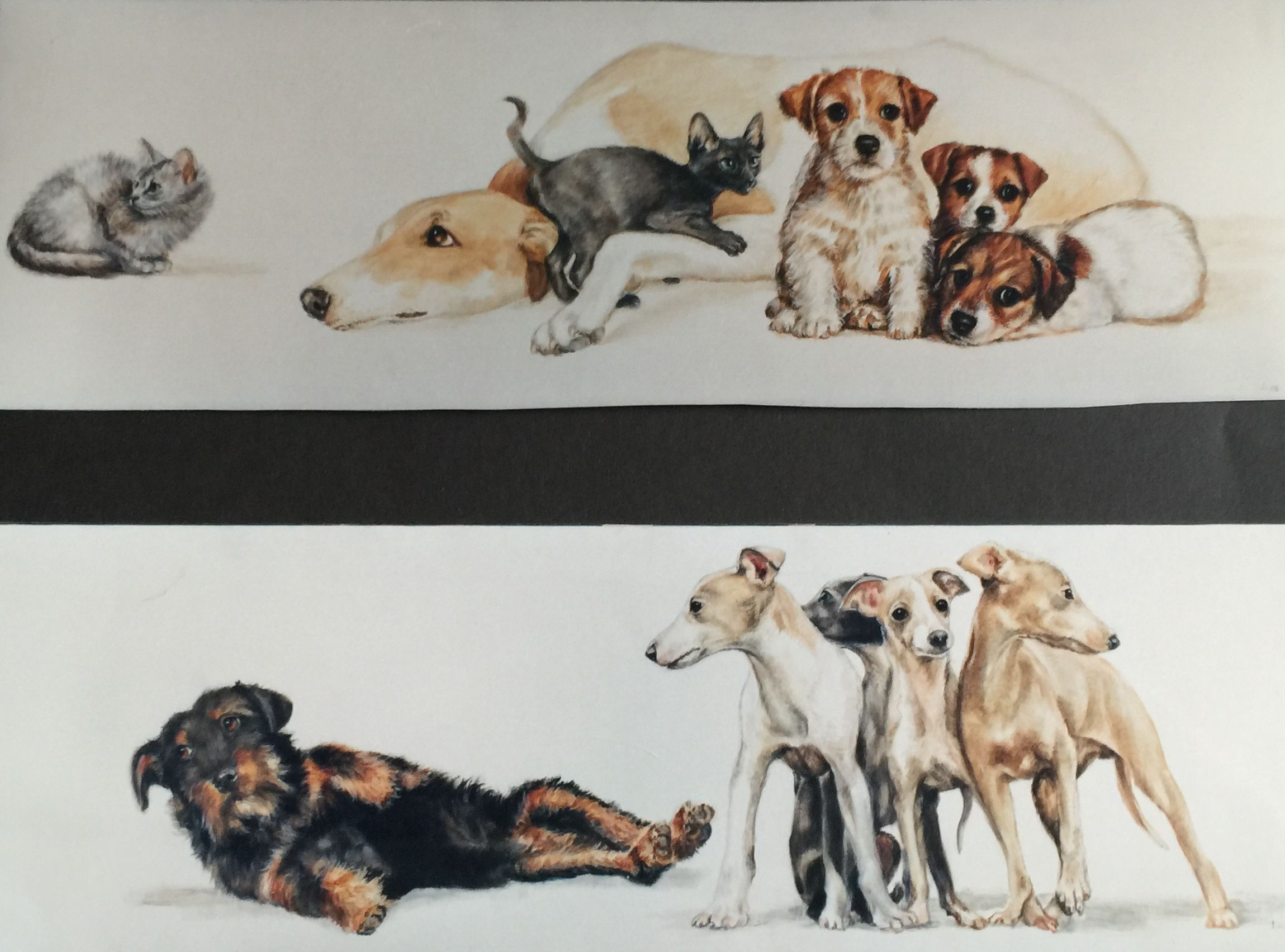 #greyhounds#Hounds, #dogs Painted by lucillabollati.com