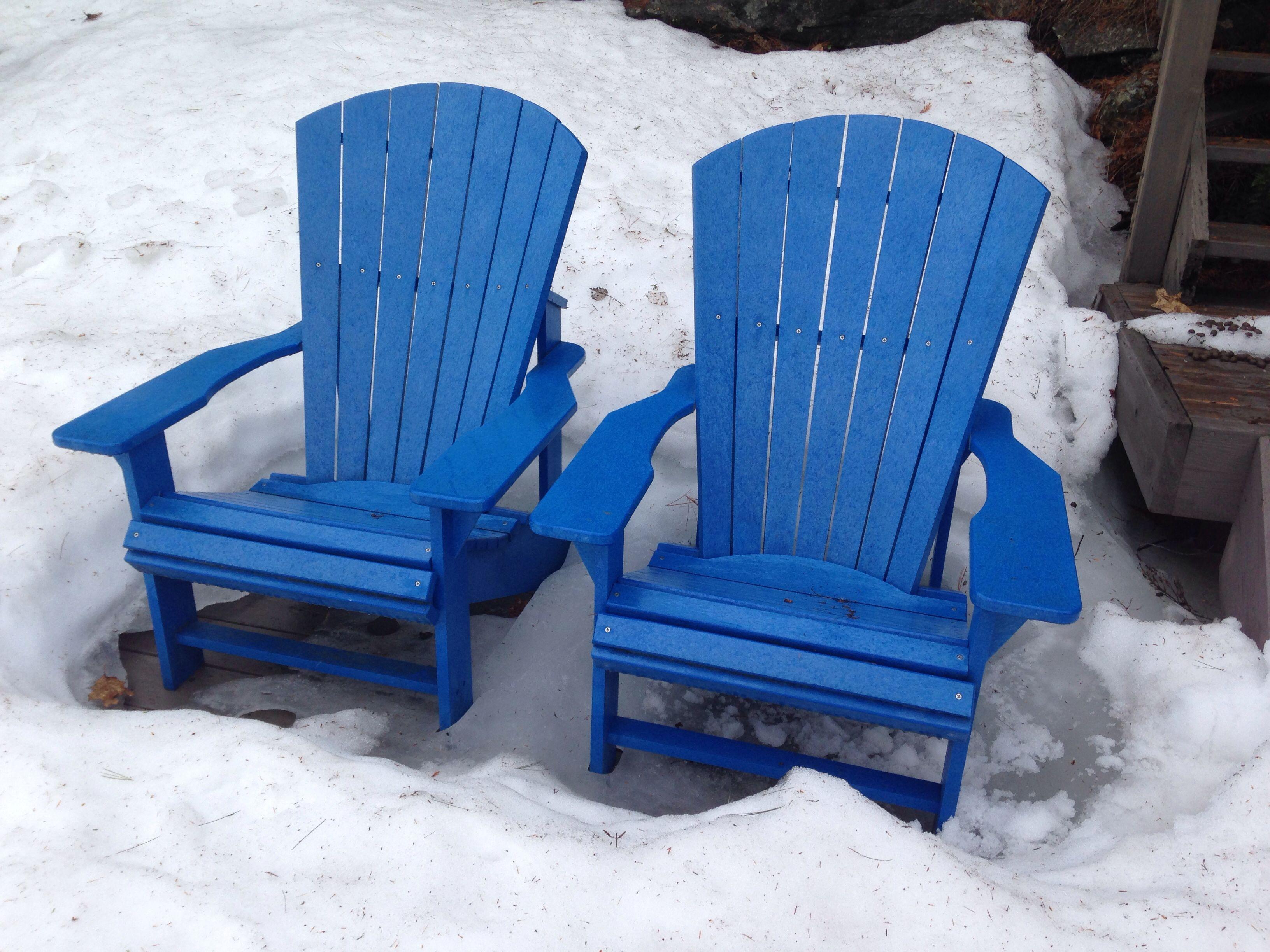 Muskoka chairs in the snow.