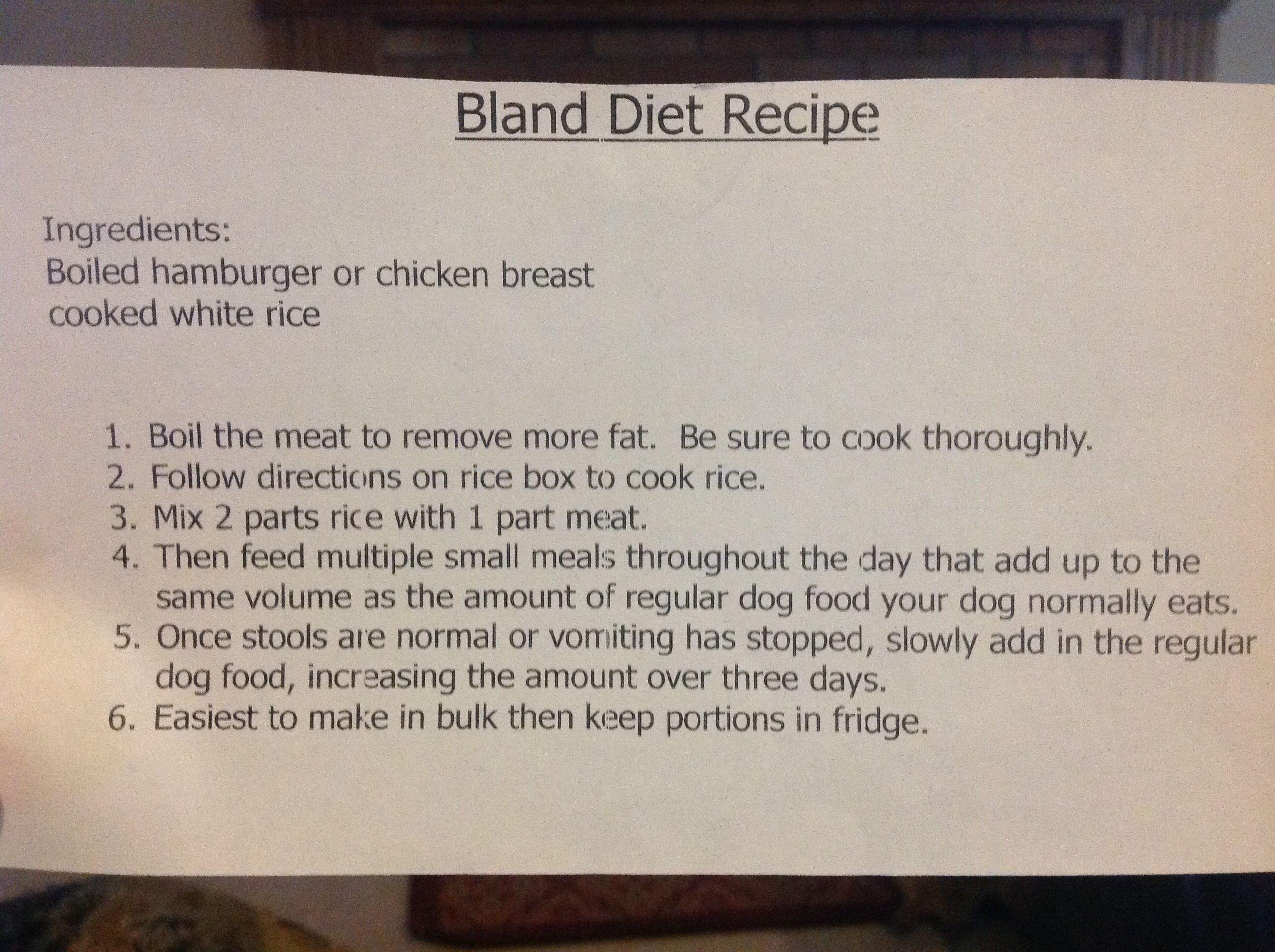 dog bland diet recipe