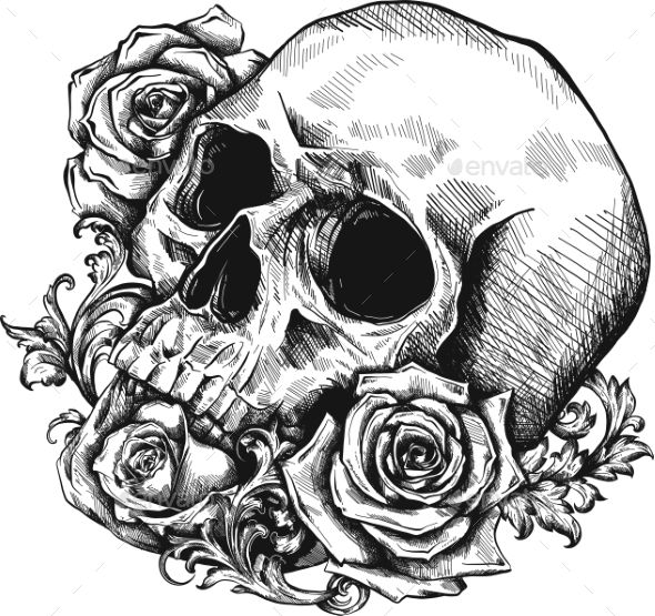 Human Jaw Tattoo: Human Skull With Roses On White Background