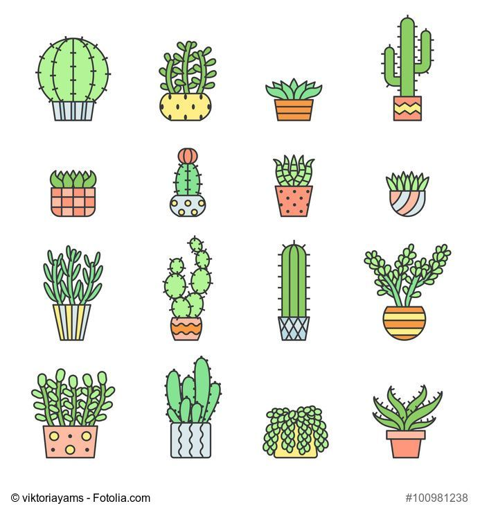 Succulents and cacti outline multicolored vector icons set. Modern ...
