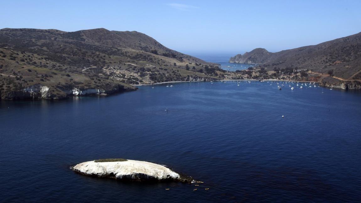 Roaming Catalina Island S Backcountry Catalina Island Catalina Two Harbors