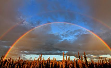 via weather underground: An incredible double rainbow in Tok, Alaska. Photo taken by WunderPhotographer katy99780: