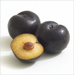Friar Plums Scientific Binomial Name Prunus Domesticus Usage