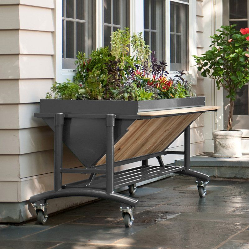 LGarden Elevated Gardening System | From Hayneedle.com