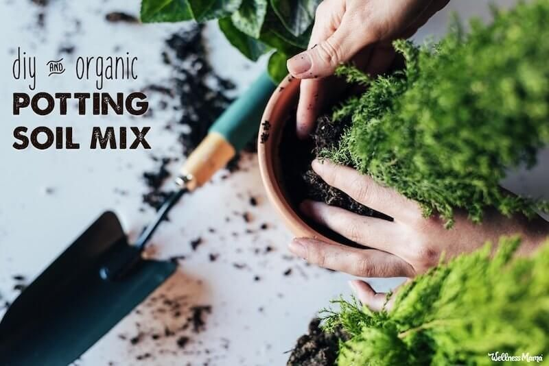 Diy potting soil mix for indoor and container plants