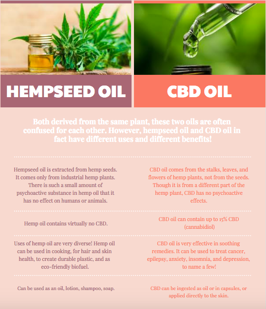 What Is The Difference Between CBD Oil and Hemp Oil?