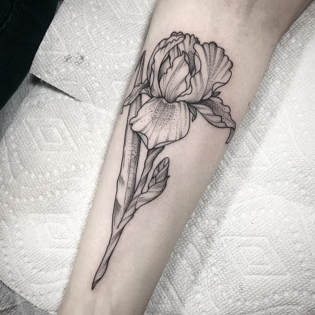 Iris For Amelia Thank You Johnotattooer Black Iris Tattoo Iris Flower Tattoo Flower Tattoo Sleeve Iris Tattoo