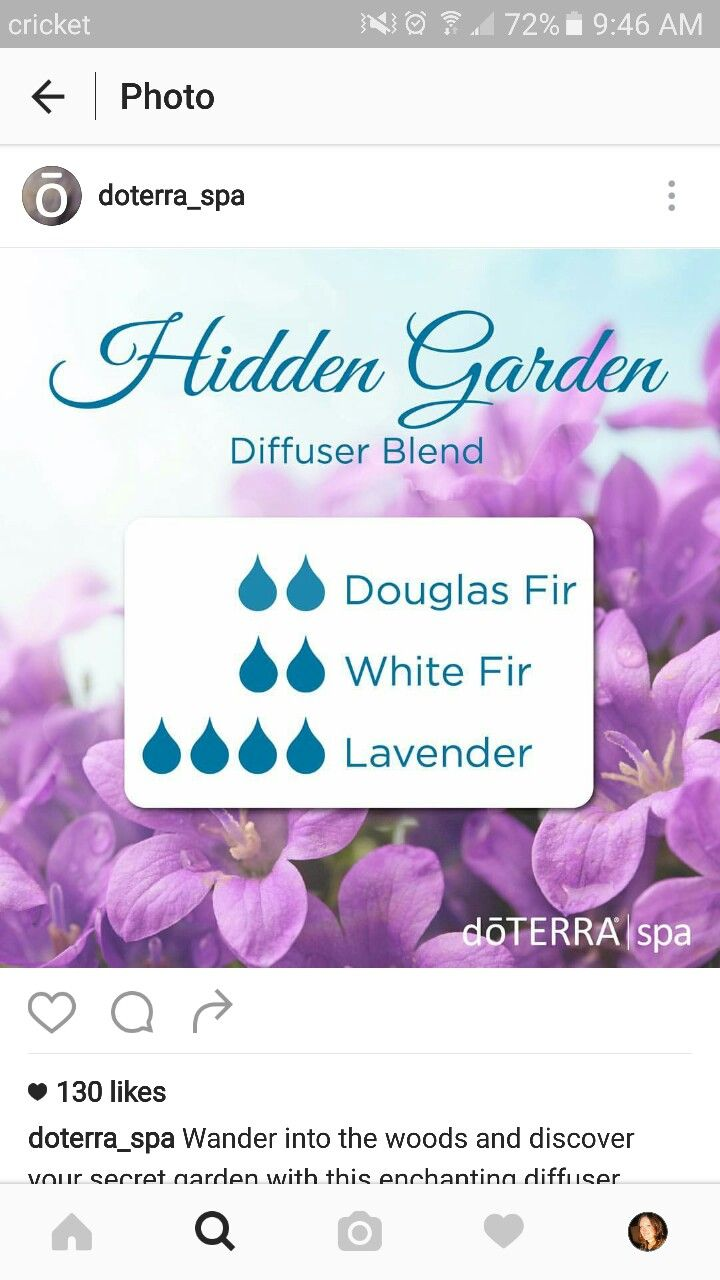 Pin By Shantel Ewell On Summer Diffuser Blends Pinterest