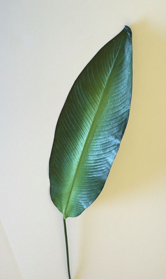 Tropical Bird Of Paradise Leaf Artificial Faux Home Decor 38 Tall