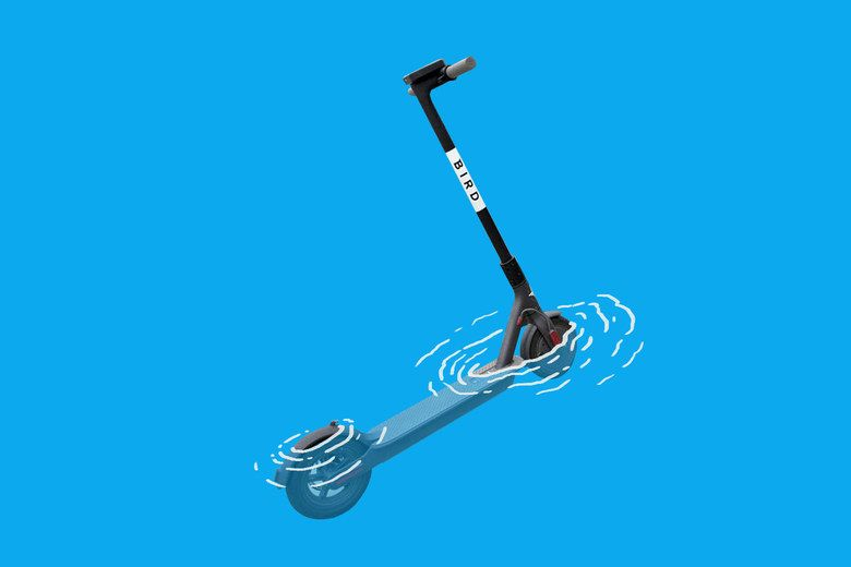 People Keep Throwing Electric Scooters Into Lakes and Rivers