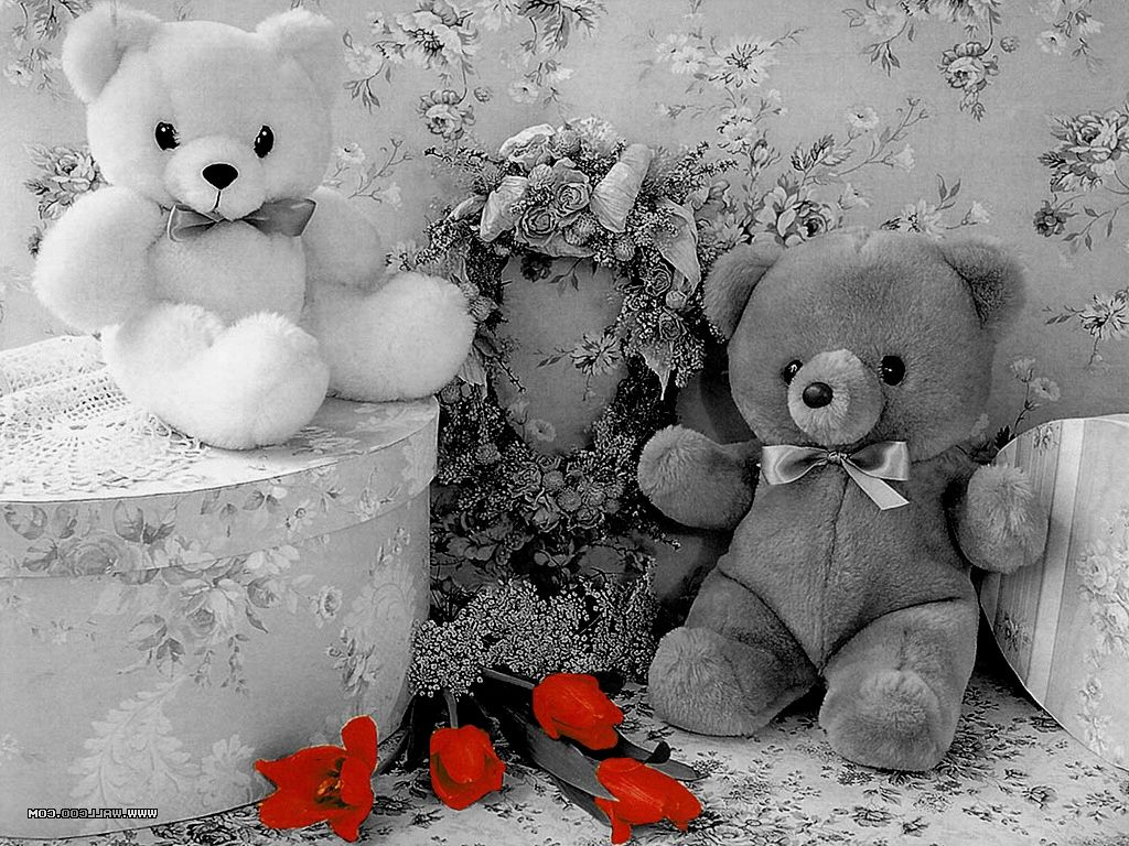 Cute Teddy Bear Black And White Wallpapers