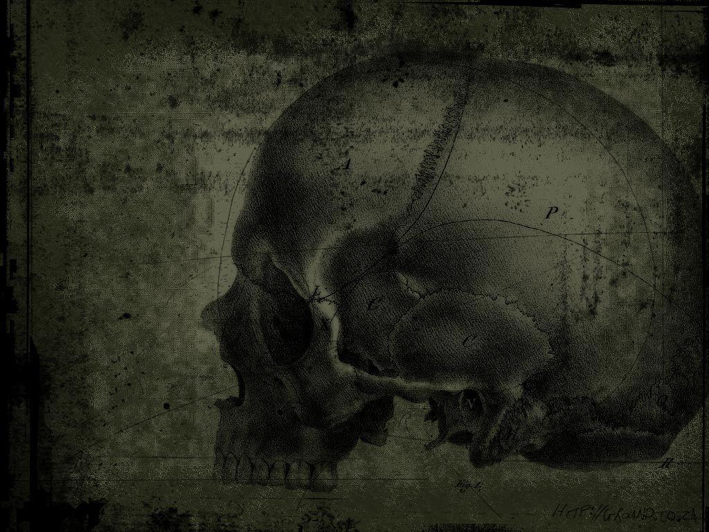 Simple Wallpaper Halloween Skull - b7ddb1c24189b2a7fde1f63dac55b4a6  Trends_423487.jpg
